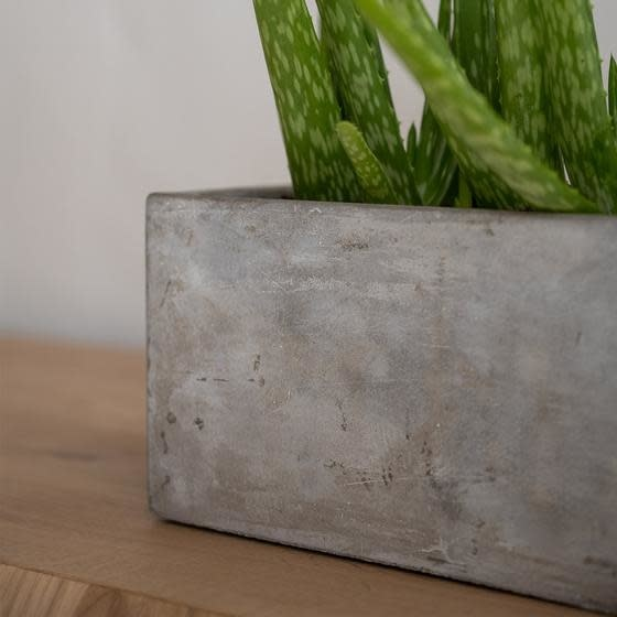 PotteryPots 2021 Alice concrete