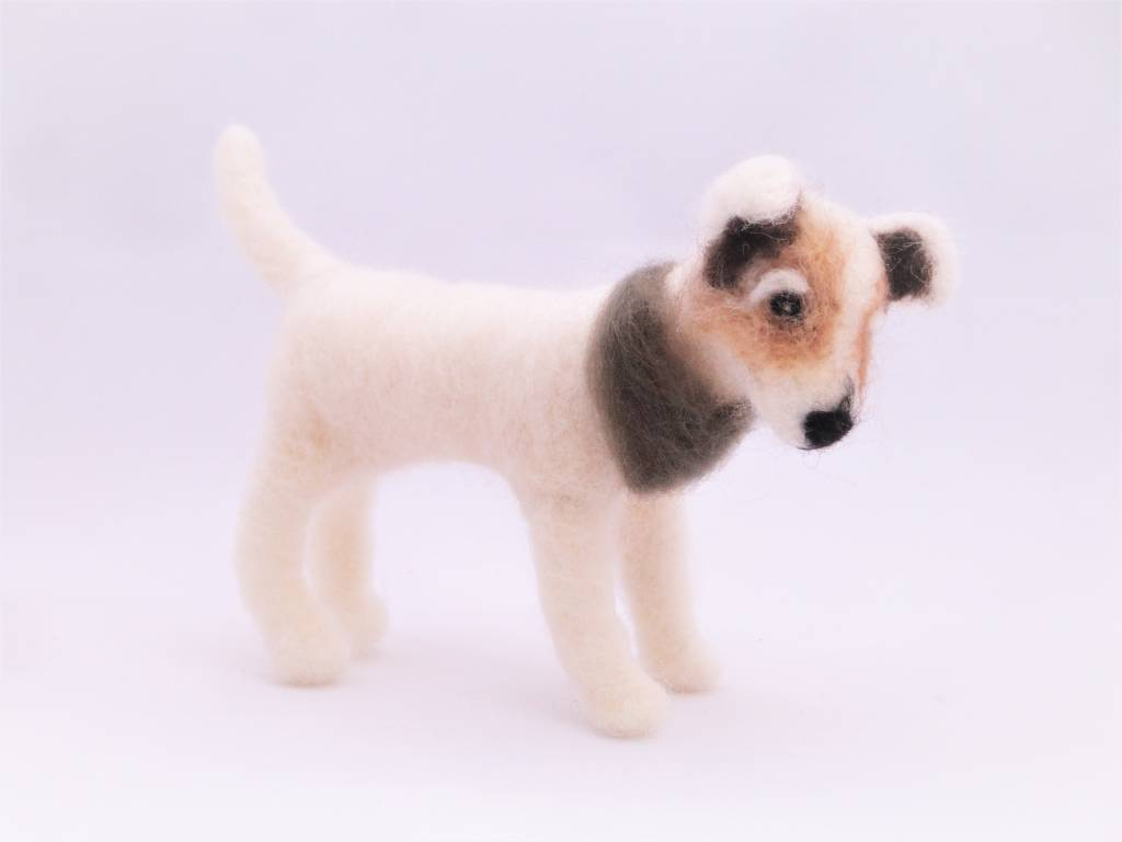 De Wolshoop Hond Jack Russel