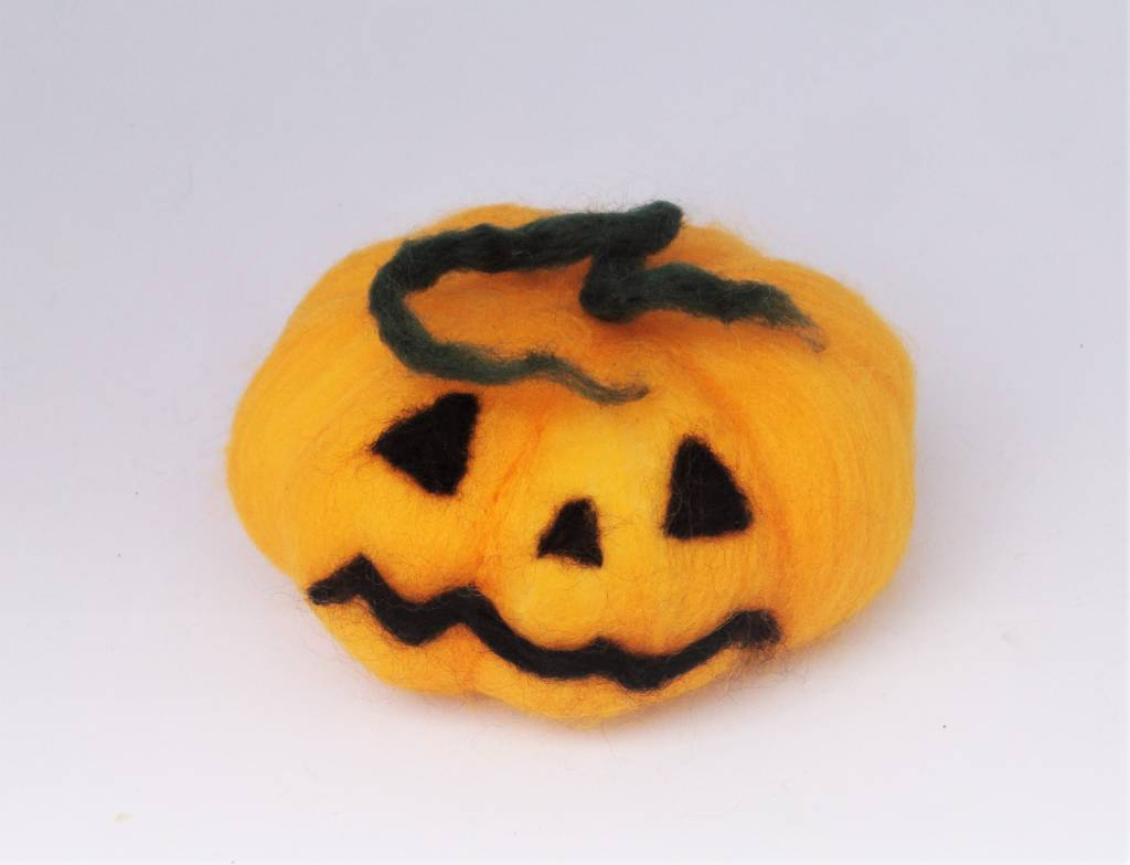 De Wolshoop Pompoen Halloween