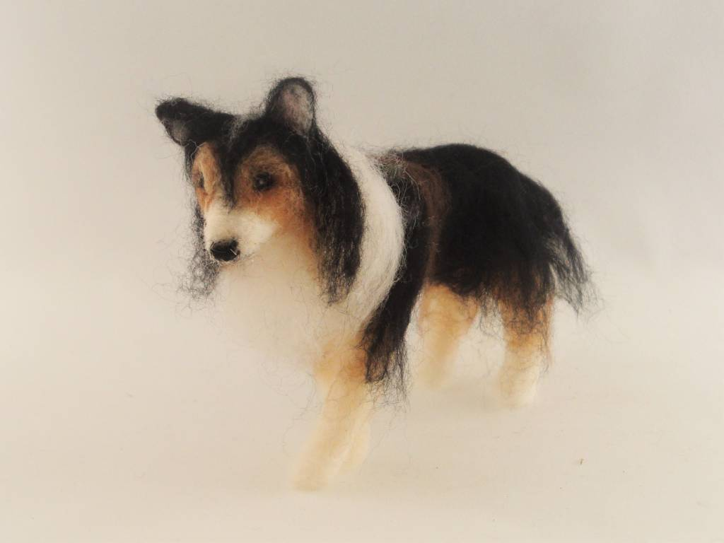 De Wolshoop Hond Collie zwart