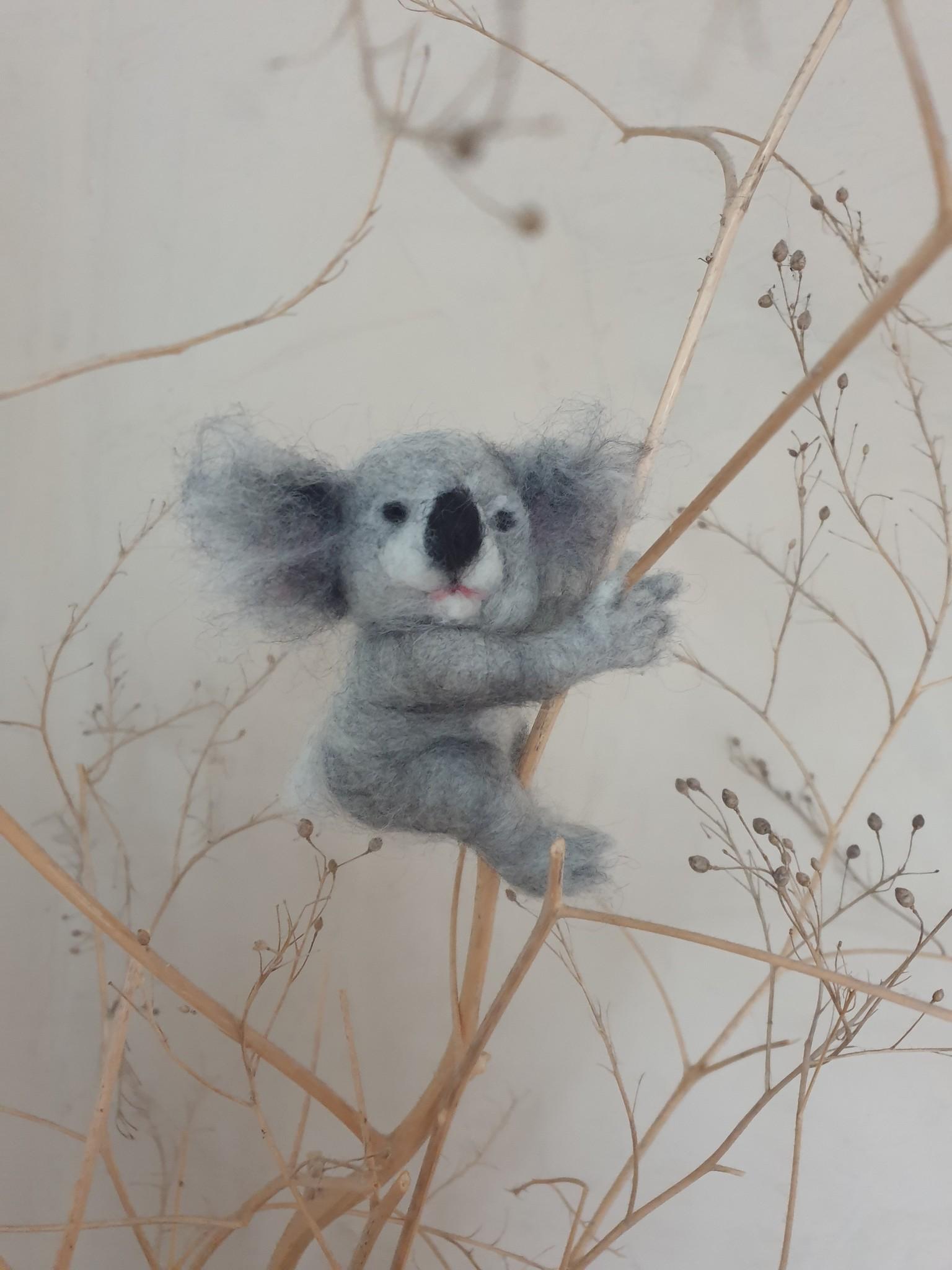 De Wolshoop Koala