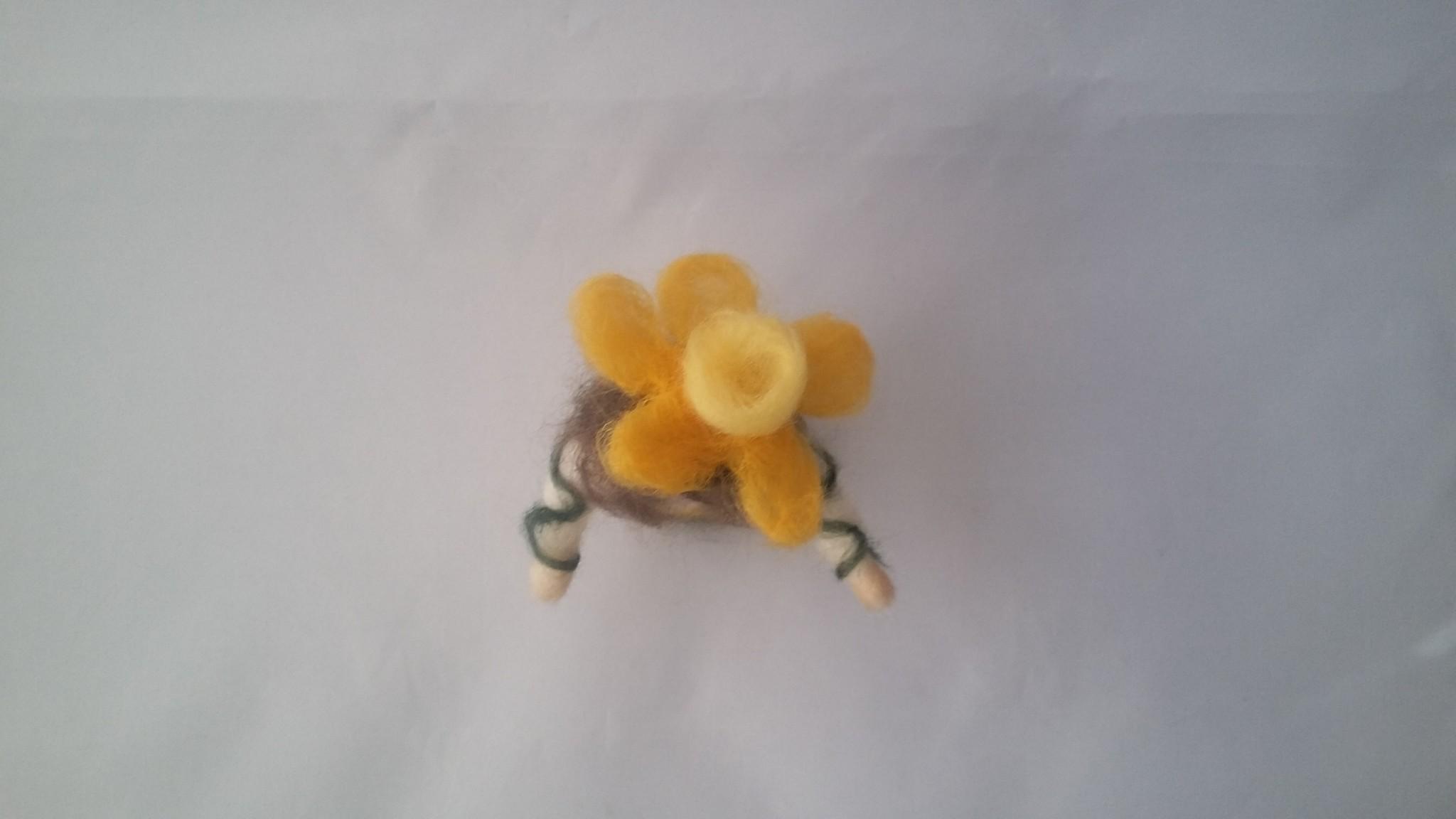 De Wolshoop Bloemenkind Narcis