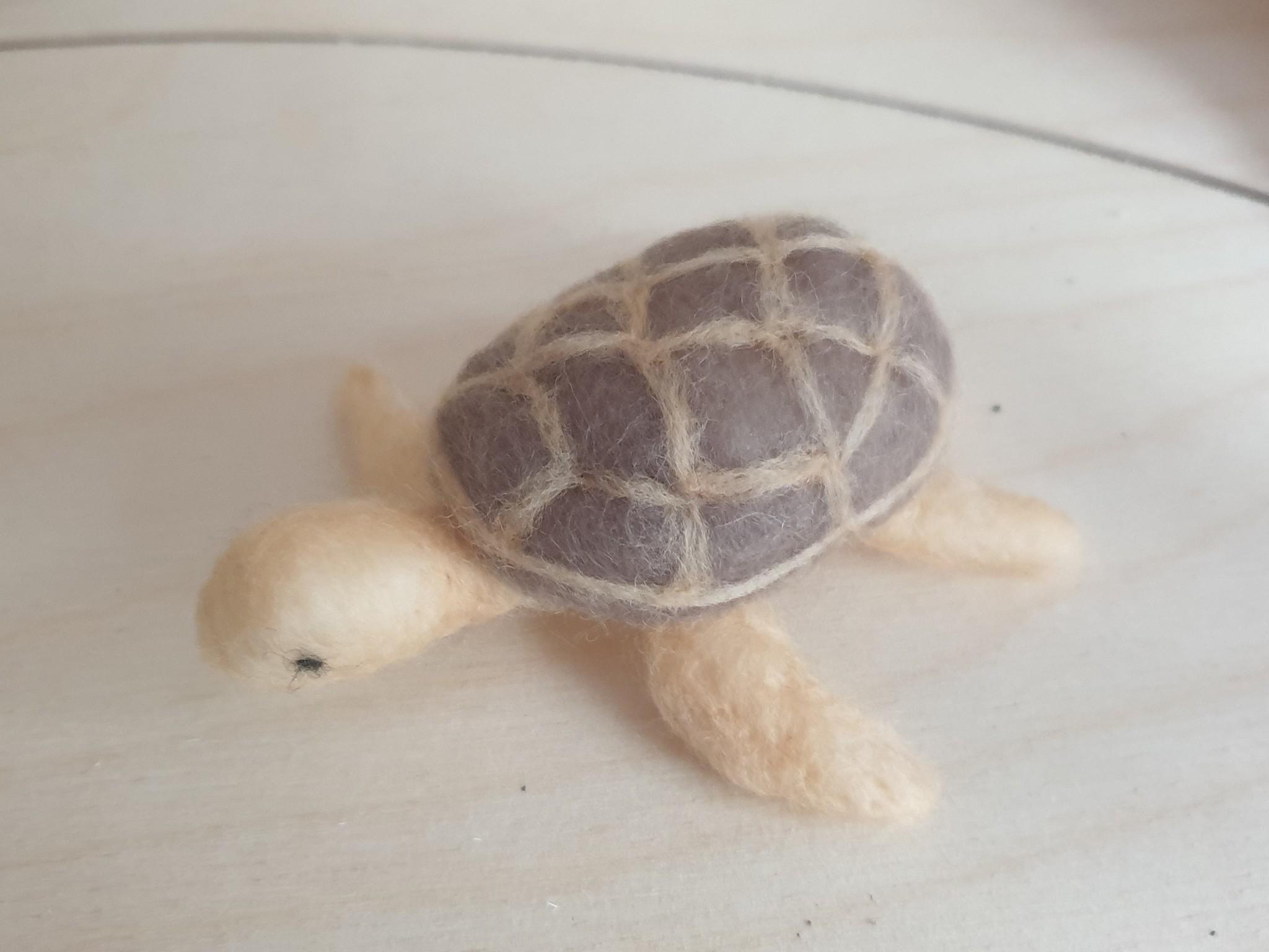 De Wolshoop schildpad