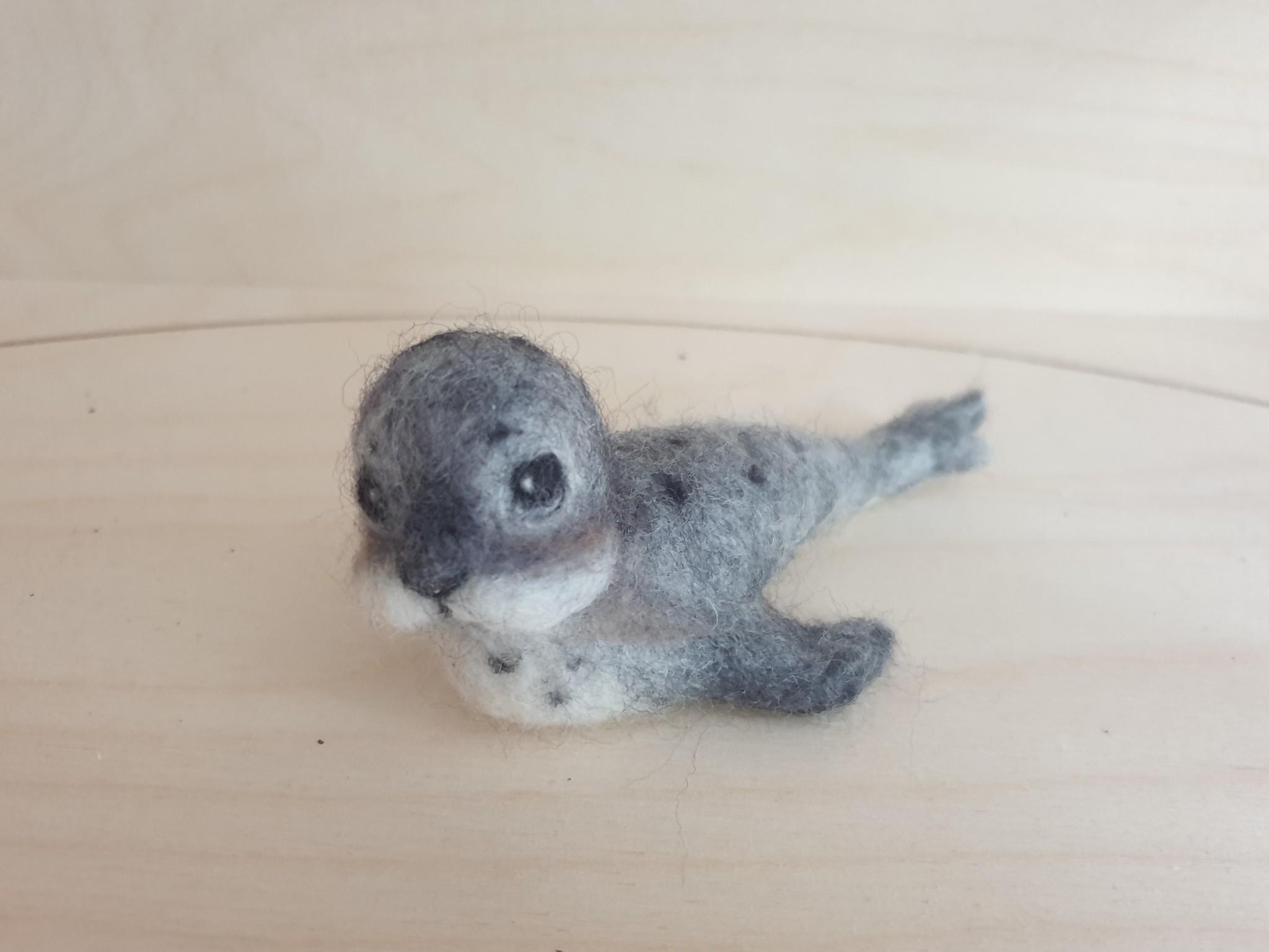 De Wolshoop zeehond