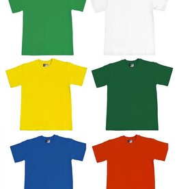 Primary PE T-Shirts (Various Colours)