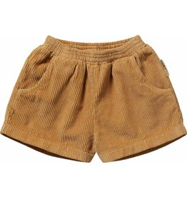 maed for mini maed for mini shorts marakesh monkey