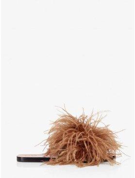 ATP Farro Feathers/Vacchetta