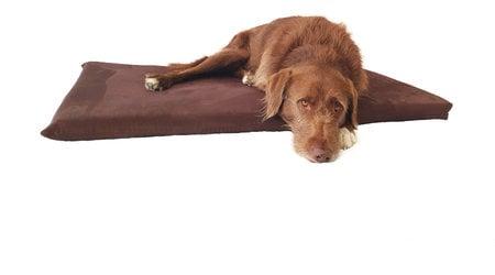 Orthopädische Hundematratze