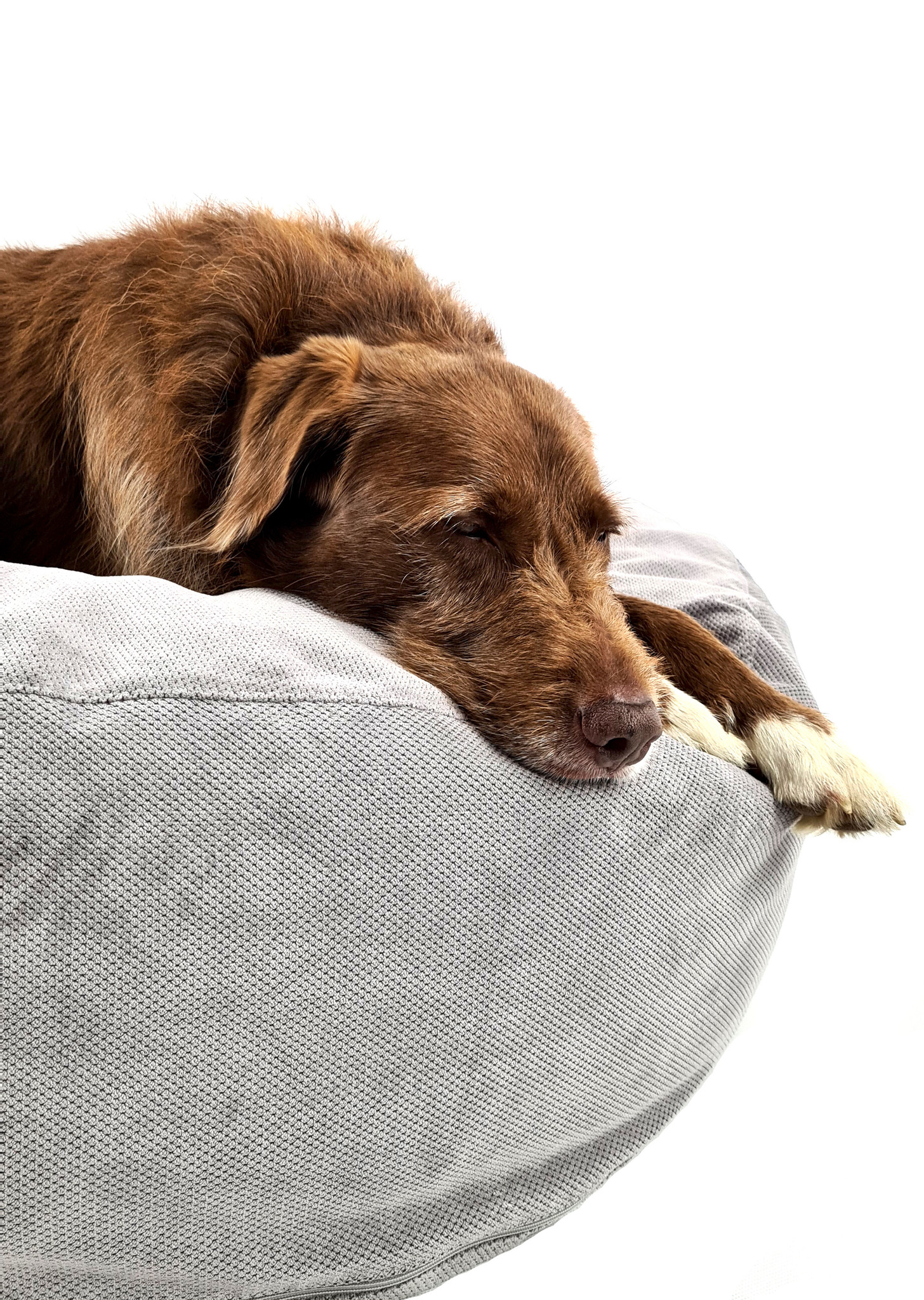 Hundebett Pouf - Polster Silbergrau