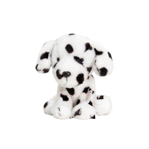 Dalmatiër Dotty