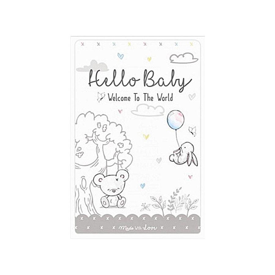 Mijlpaalkaarten Hello Baby-1