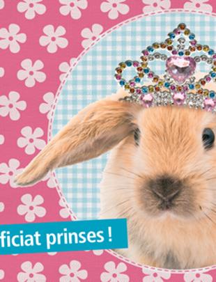 """Leuke kaartjes """"Proficiat Prinses!"""""""