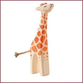 Ostheimer Kleine giraffe met kop omhoog