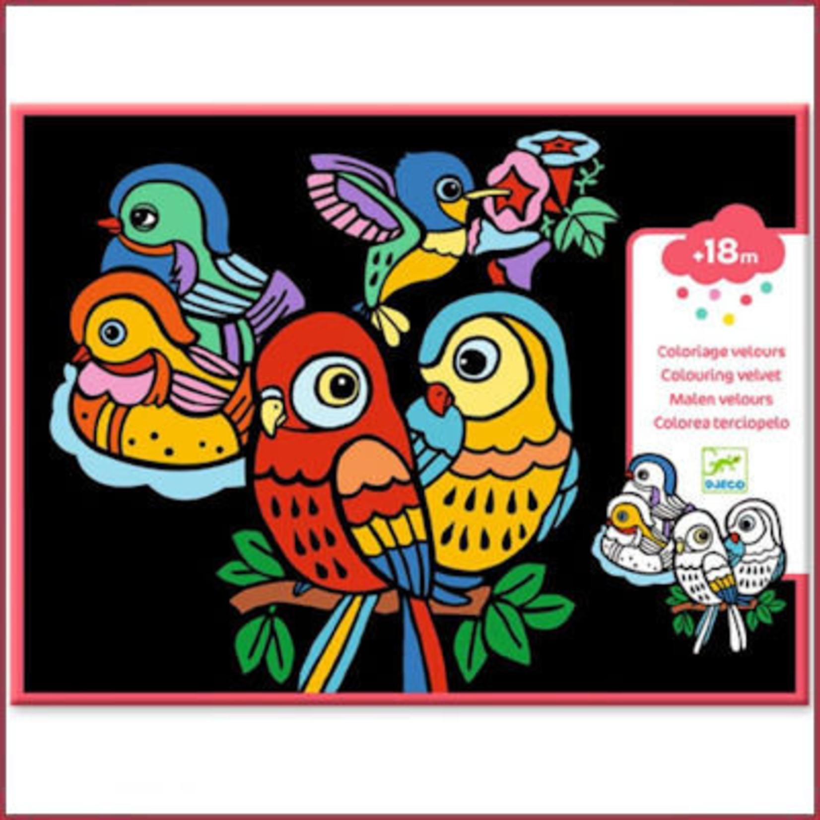 Djeco Viltkleurplaten Babyvogels