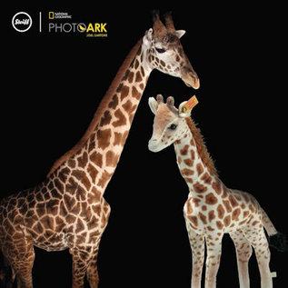 Steiff National Geographic Magda Masai Giraf 26cm