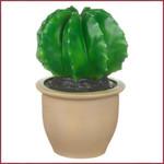 Cactus in pot Lamp LED, bol model
