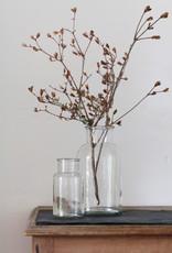 Busby & Fox BOTANICAL GLASS JAR
