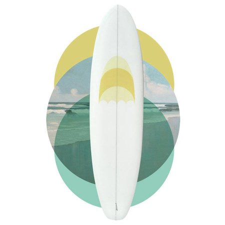 Plume d'avion 6'5 Pigeon // SOLD, SORRY