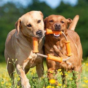 Major Dog Dog Toy Dummy Tussle Large
