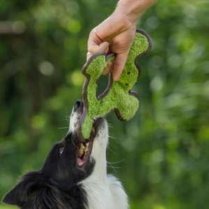 Major Dog Hondenspeelgoed Frog met Pluche