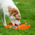 Major Dog Foldable Bowl