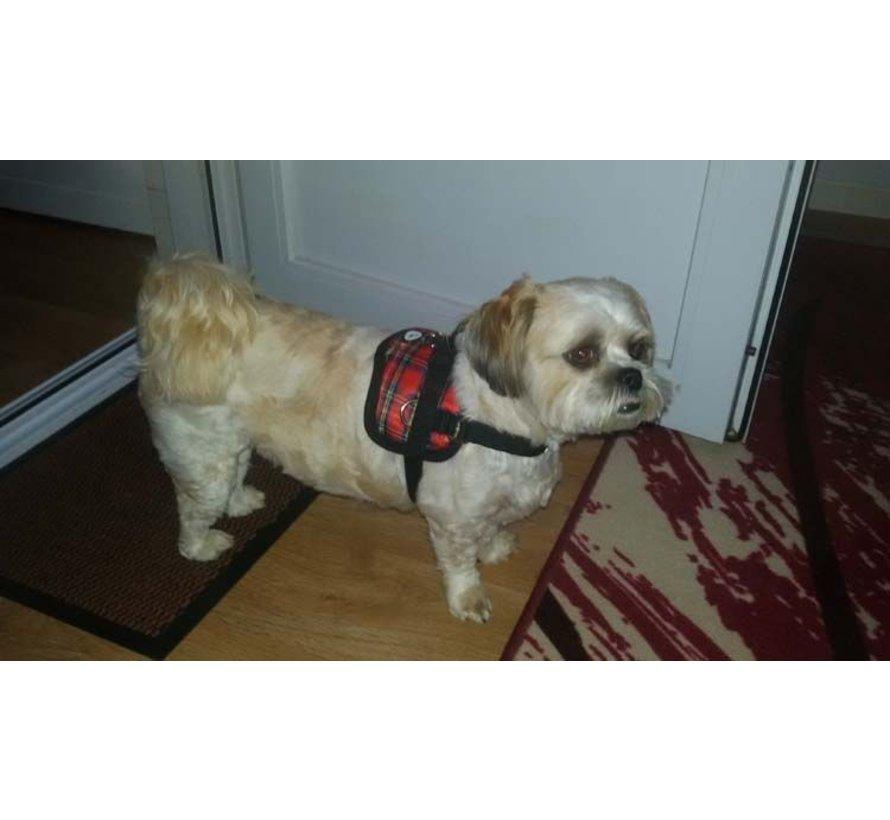Survival dog harness Tartan Red