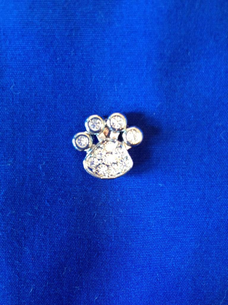 Pootje decoratie voor halsband en riem met naam