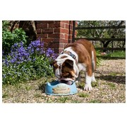 Beco Pets Drinkbak of voerbak Beco Bowl Blauw