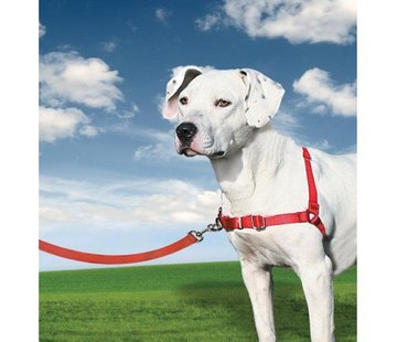 Petsafe Anti-Pull Dog Harness Easy Walk ® Red
