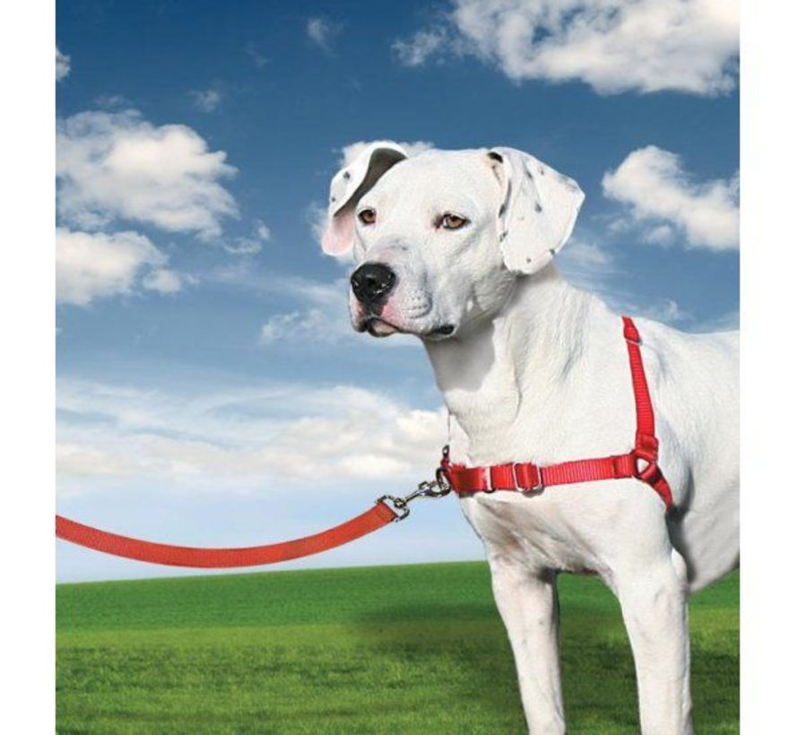 Anti-Pull Dog Harness Easy Walk ® Red