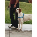Petsafe Anti-Trek hondentuig Easy Walk ® Deluxe