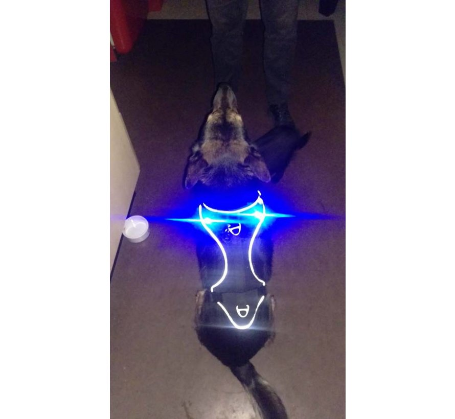 Luumi LED lights Black