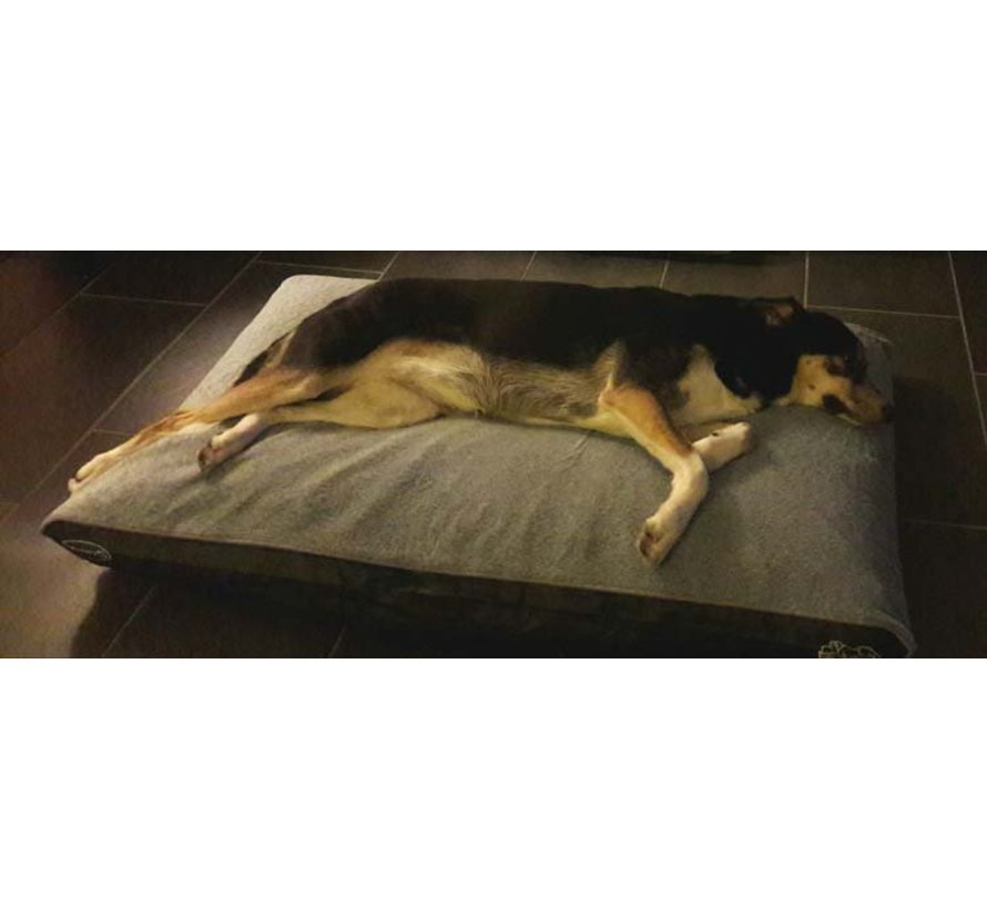Orthopedisch Hondenkussen Chateau Memory Foam Plush Dove