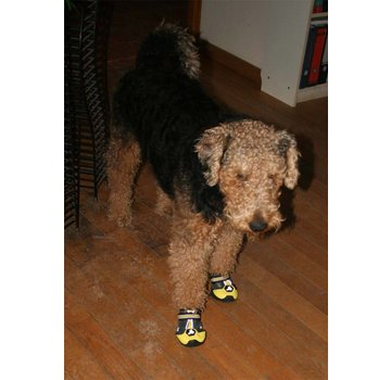 EQDOG Dog Shoe 4Seasons Yellow