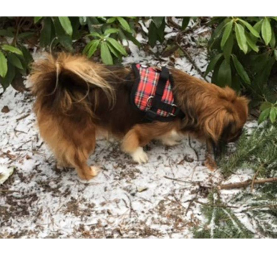 Hondentuig Survival harness Tartan Red