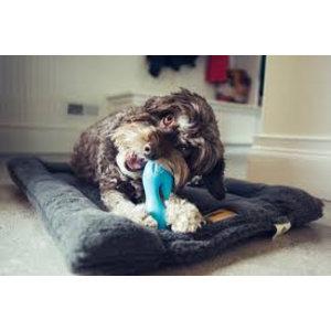 West Paw Design Dog Toy Zogoflex Qwizl Aqua