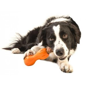 West Paw Design Dog Toy Zogoflex Qwizl Tangerine