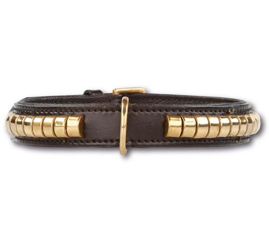 Hondenhalsband Gold Row Black