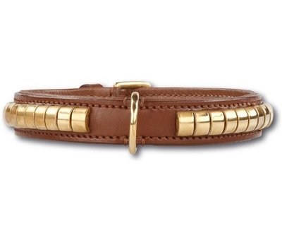 Doxtasy Hondenhalsband Gold Row Brown
