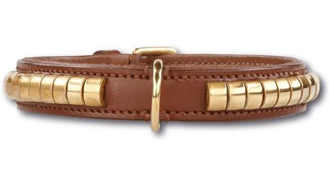 Hondenhalsband Gold Row Brown