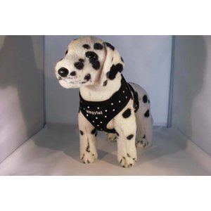 Wagytail Dog Harness black with Swarovski