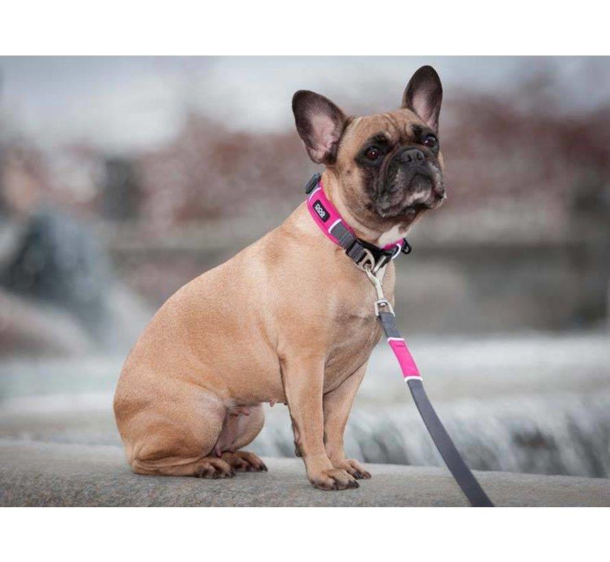 Dog Collar Urban Explorer Wild Rose