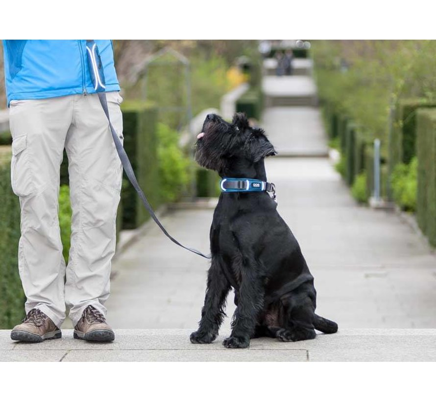 Dog Collar Urban Explorer Ocean Blue