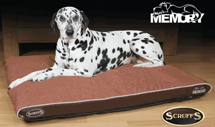 Scruffs Hilton Orthopaedic Medium Hondenkussen Bruin