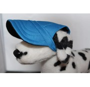 Machiko Dog Hat Blue