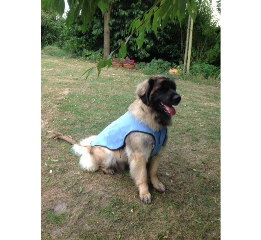 Cooling Vest Cool Dog Blue