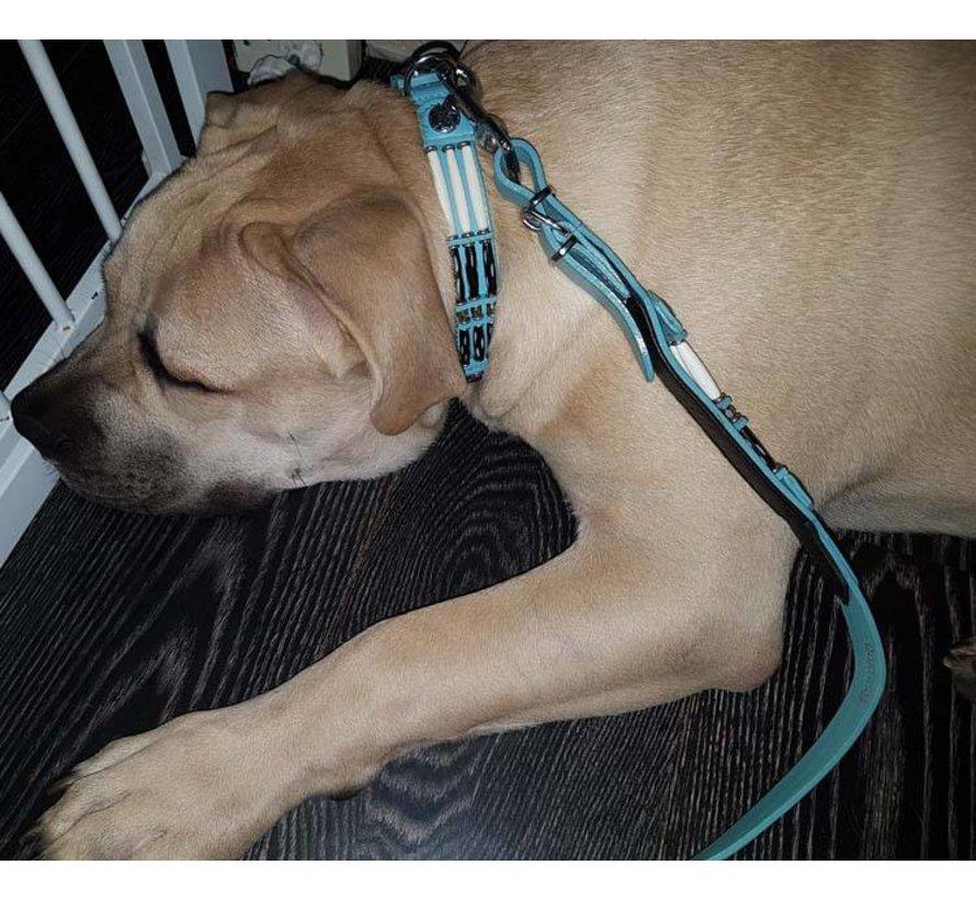 Dog Collar Baby Blue Eagle 25mm