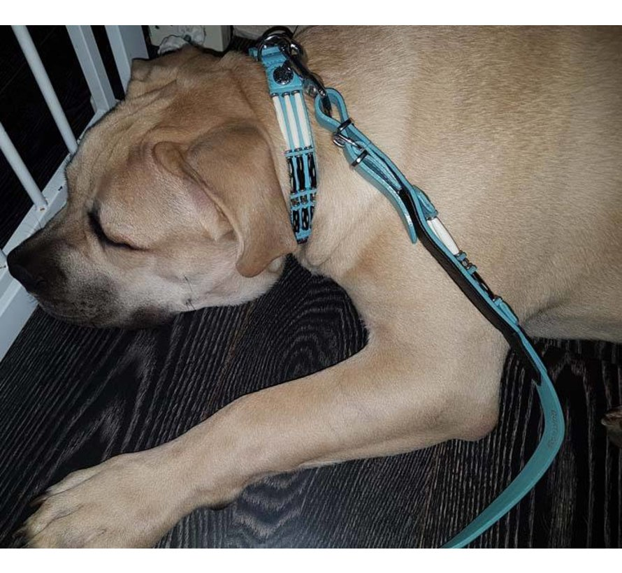 Hondenhalsband Baby Blue Eagle 25mm