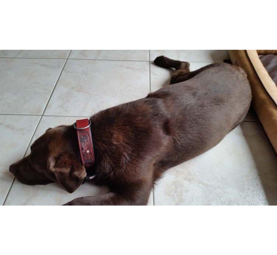 Dog Collar Savannah Burgundy