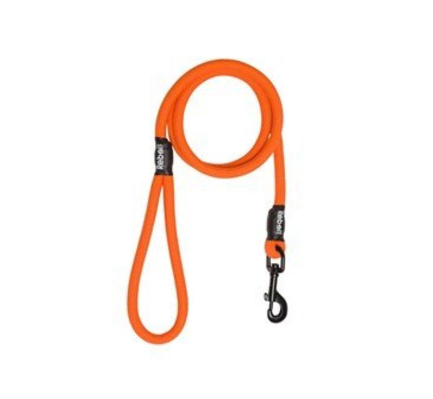 Hondenriem Oranje